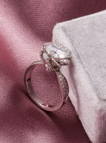 2ct Round Moissanite Twisted Cathedral Halo Engagement Ring (8)