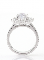 3ct Oval Moissanite Graduated Halo Engagement Ring (4)