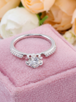 Classic 4 claw moissanite solitaire ring (10)